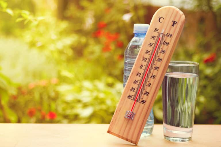 Thermometer reading 110 F on table outside beside glass of water